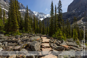 Hiking to Lake Oesa near Lake O'Hara