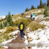 Wilcox Pass Hike