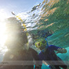 Snorkelling Maui with Seafire Charters