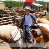 Horseback Riding at Anchor D Ranch